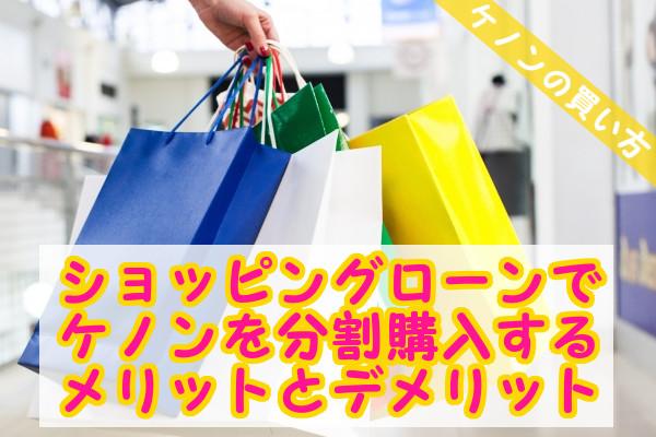 ケノンの購入方法のショッピングローンで月々3,300円~