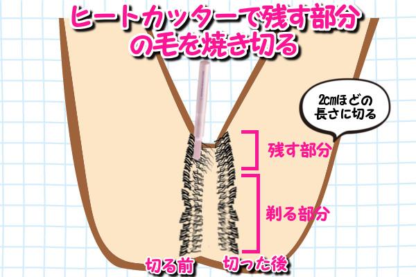 Iラインの毛量を減らす部分の毛はヒートカッターで2cmほどの長さに整える